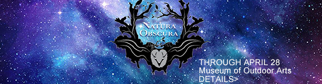The Museum of Outdoor Arts presents Natura Obscura, a surrealist forest immersive experience, opens Friday, January 11